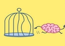 BONUS per il Rientro dei Cervelli